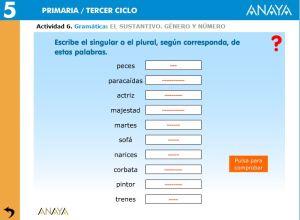external image gramatica-el-sustantivo06.jpg?w=300&h=220