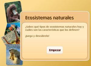 external image la-proteccion-del-medio-ambiente-los-ecosistemas06.jpg?w=300&h=219