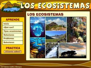 external image la-proteccion-del-medio-ambiente-los-ecosistemas07.jpg?w=300&h=225